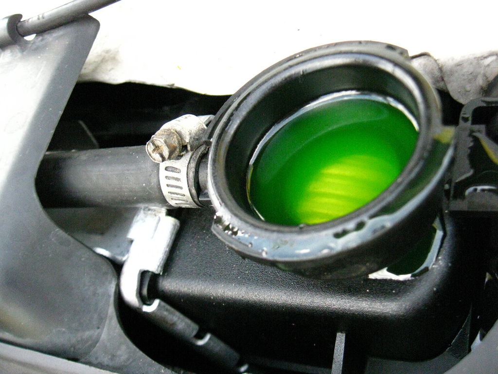 Antifreeze-To Flush or Not to Flush, that is the Question